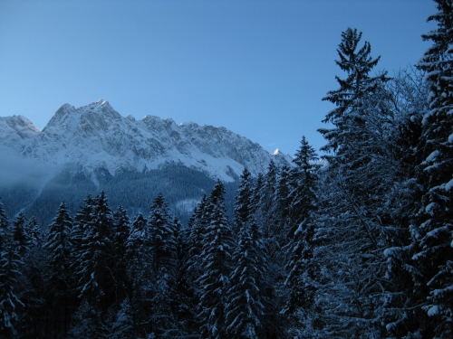 The View from the Conference Hotel onto the Alps